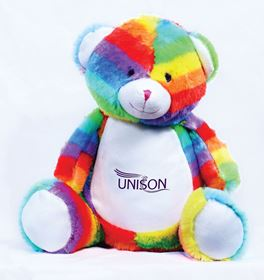 Picture of Rainbow Bear